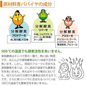 バイオノーマライザー 青パパイヤ発酵食品(3g×30包) 三旺インターナショナル shizenkan 08