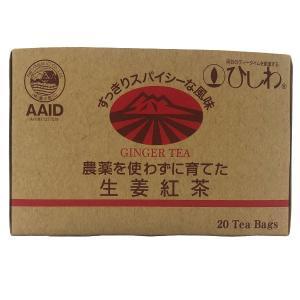 農薬を使わずに育てた生姜紅茶TB(40g(20袋)) 菱和園 冬季限定|shizenkan