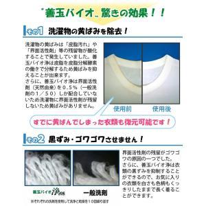 善玉バイオ洗剤浄 JOE (1.3kg)(計量用スプーン付) エコプラッツ ミニ浄(30g)2袋プレゼント|shizenkan|03
