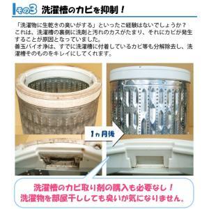 善玉バイオ洗剤浄 JOE (1.3kg)(計量用スプーン付) エコプラッツ ミニ浄(30g)2袋プレゼント|shizenkan|04