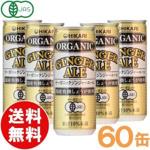オーガニック ジンジャーエール(250ml×30本) 2ケース ヒカリ まとめ買い|shizenkan