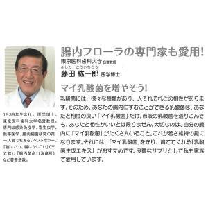 植物性乳酸菌生成エキス(5ml×30包) オーサワジャパン|shizenkan|09