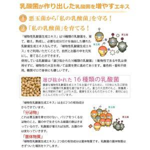 植物性乳酸菌生成エキス(5ml×30包) オーサワジャパン|shizenkan|05