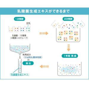 植物性乳酸菌生成エキス(5ml×30包) オーサワジャパン|shizenkan|07