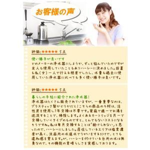 浄水器ハーレーII(正規輸入品) 除塩素シャワーとロングスパウト(25cm)をプレゼント! RHS|shizenkan|05