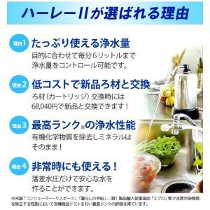 浄水器ハーレーII(正規輸入品) 除塩素シャワーとロングスパウト(25cm)をプレゼント! RHS|shizenkan|07