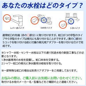 浄水器ハーレーII(正規輸入品) 除塩素シャワーとロングスパウト(25cm)をプレゼント! RHS|shizenkan|09