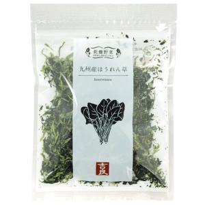 乾燥野菜 ほうれん草(40g) 吉良食品|shizenkan