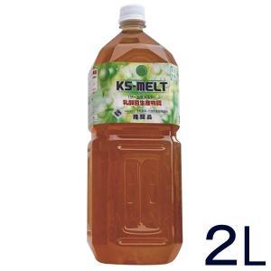 KS-MELT(ケーエスメルト)(2L) KS西日本 ノズル式スプレー30mlとスプレー50mlの空容器プレゼント shizenkan