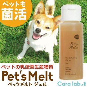 ペットの乳酸菌生産物質  ペッツメルトジェル(55g) カーラ・ラボ|shizenkan