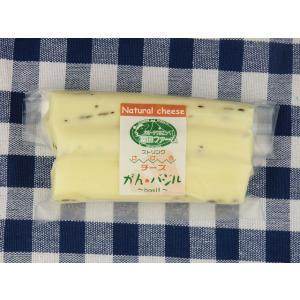 北海道 チーズ さけるチーズ(バジル)100g【A1503】【沖縄・離島は注文は受け付けておりません】【産直品の為、同梱・代引き不可】【ほっかいどう】|shizenkizuna-store