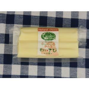 北海道 チーズ/さけるチーズ(山わさび)100g【A1507】【沖縄・離島は注文は受け付けておりません】【産直品の為、同梱・代引き不可】【ほっかいどう】|shizenkizuna-store