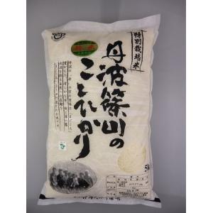 こしひかり玄米 5kg 特別栽培米!29年産、丹波篠山エコファーマー農薬不使用の特別栽培米  【沖縄・離島については、追加送料1,650円かかります。ご|shizenkizuna-store