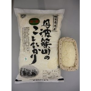【お待たせしました!30年度産新米!】特別栽培米!丹波篠山エコファーマー農薬不使用・無化学肥料特別栽培米、こしひかり5kg  【沖縄・離|shizenkizuna-store