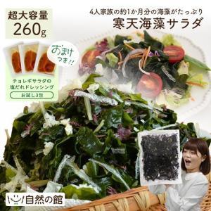 ダイエット食品 メガ盛り 送料無料 寒天海藻サラダ メガ盛260g 今だけお試しドレッシング付きが選べる サラダ ミネラル|shizennoyakata