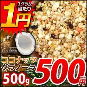 グラノーラ ココナッツグラノーラ 1kg (500g×2) メガ盛 ココナッツ グラノーラ コーンフレーク フルーツグラノーラ シリアル食品 シリアル|shizennoyakata