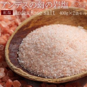 岩塩 食用 ボリビア岩塩 送料無 料 紅塩(ピンクソルト) 550g×2個セット 食用 塩 料理 バス ソルト 入浴剤 業務用