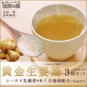 生姜 生姜パウダー しょうが湯 シールド乳酸菌 黄金生姜湯 乳酸菌入 3個セット (15g入り5袋×3)|shizennoyakata