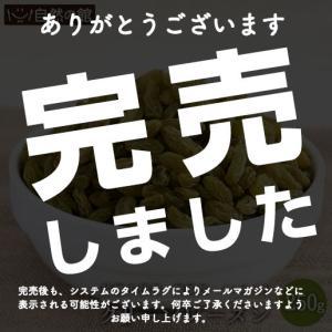 グリーンレーズン 250g 無添加 砂糖不使用 オイル不使用 送料無料 ドライフルーツ  チャック付き トッピング お試し 映え 大人女子 自然の館● 非常食 ミネラル|shizennoyakata