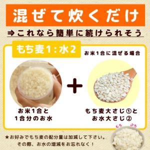 ダイエット食品 もち麦 館のもち麦 1kg (...の詳細画像4