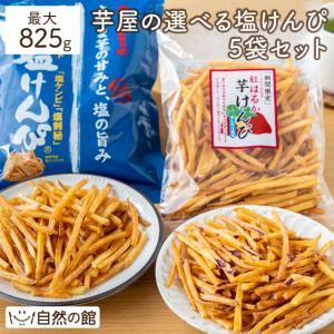 スイーツ (栗 芋 秋 かぼちゃ)南国製菓(水車屋) 芋屋の細切り塩けんぴ ( 芋けんぴ ) 5個セット 送料無料
