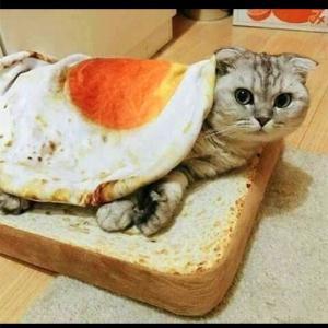猫 ペット クッション ベッド 目玉焼き