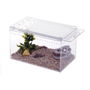 爬虫類 ケージ トカゲ カメレオン 水槽 ペット cage