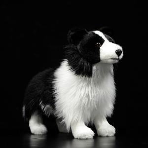ボーダーコリー ぬいぐるみ 犬 グッズ クッション わんちゃん アニマル 動物 かわいい|sho-bai