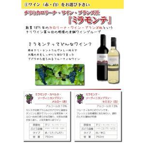 オリジナルワイン 似顔絵ラベル 750ml 1本 化粧箱入り プレゼントに 名入れお酒 お歳暮 クリスマス|shochuya-doragon|05