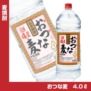 麦焼酎 おつな麦 25度 4Lジャンボペットボトル 4000ml 焼酎乙類 合同酒精 大容量 業務用|shochuya-doragon