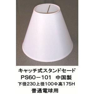 PS60-101|shoden