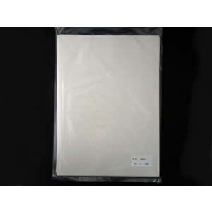 書道半紙サイズ練習用 水(機械漉半紙) 100枚|shodouya