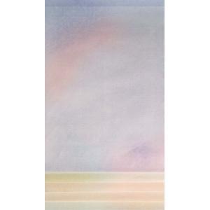 紅葉 半懐紙判 練習用|shodouya