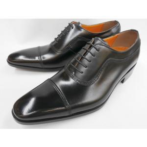 即日発送可能 アントニオ ドゥカティ ストレートチップ DC1173(ブラック) ANTONIO DUCATI 靴 メンズ shoes-aman