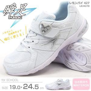 瞬足 シュンソク スニーカー レモンパイ427 LEJ4270 キッズ|shoesbase