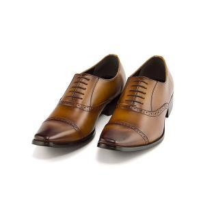 ビジネスシューズ メンズ ロングノーズ ストレートチップ 3E 幅広 フランチェスコビガーリ Francesco Bigagli FB205 ブラウン|shoesdirect