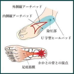 インソールプロ 足底筋膜炎 対策  中敷き インソール 衝撃吸収 かかと 足底筋膜 レディース|shoesfit|05