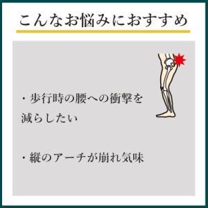 インソールプロ 腰痛 対策 中敷き インソール 衝撃吸収 腰 かかと クッション レディース|shoesfit|03