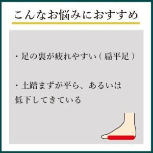 インソールプロ 扁平足 対策 中敷き インソール 衝撃吸収 偏平足 土踏まず メンズ shoesfit 03