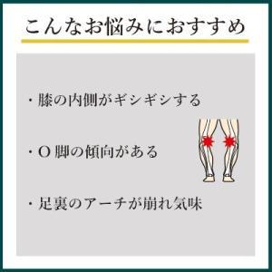 インソールプロ 膝痛 対策 中敷き インソール 衝撃吸収 膝 О脚 メンズ|shoesfit|03