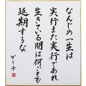 偉人の名言「なんじの一生は実行また実行であれ 生きている間は何ごとも延期するな」手書き色紙|shogendo