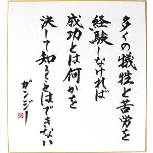 偉人の名言「多くの犠牲と苦労を経験しなければ 成功とは何かを決して知ることはできない」手書き色紙|shogendo