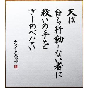 偉人の名言「天は自ら行動しない者に救いの手をさしのべない」手書き色紙|shogendo