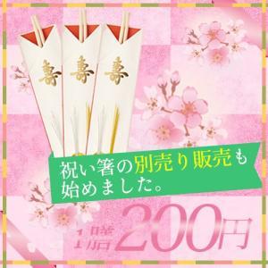 祝い箸1膳 別売り|shojikiya