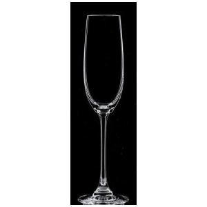 [NC5-104] サルーテ 07 シャンパンフルート 12個入(700円/個)|shokki-pro