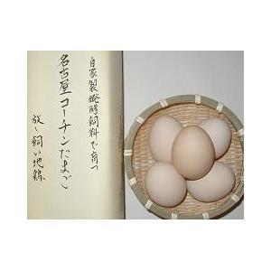 安心安全な自家製発酵飼料を与えた地鶏のこだわりたまご(名古屋コーチン有精卵1個入)|shoku-anzen