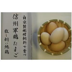 こだわりたまご信州軍鶏(有精卵1個)お一人様2個まで|shoku-anzen