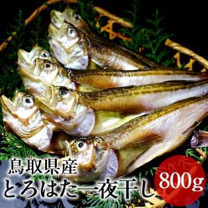 とろはた ハタハタ一夜干し 大ぶりのはたはた 日本海 鳥取県 酒の肴 希少価値 20cm以上 【送料...