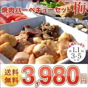 業務用セット (BBQ  バーベキュー) 『焼肉バーベキューセット 梅』3〜5人前 約1.1kg (焼き肉 焼肉 バーベキュー)|shokufukutei