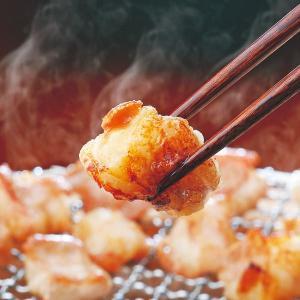 『人気ホルモン食べ比べセット』送料無料 [北海道・関西・九州産] お一人様2セット限り 2セットでさらに…(焼肉 焼き肉 バーベキュ-)小腸 丸腸 コプチャン|shokufukutei|02